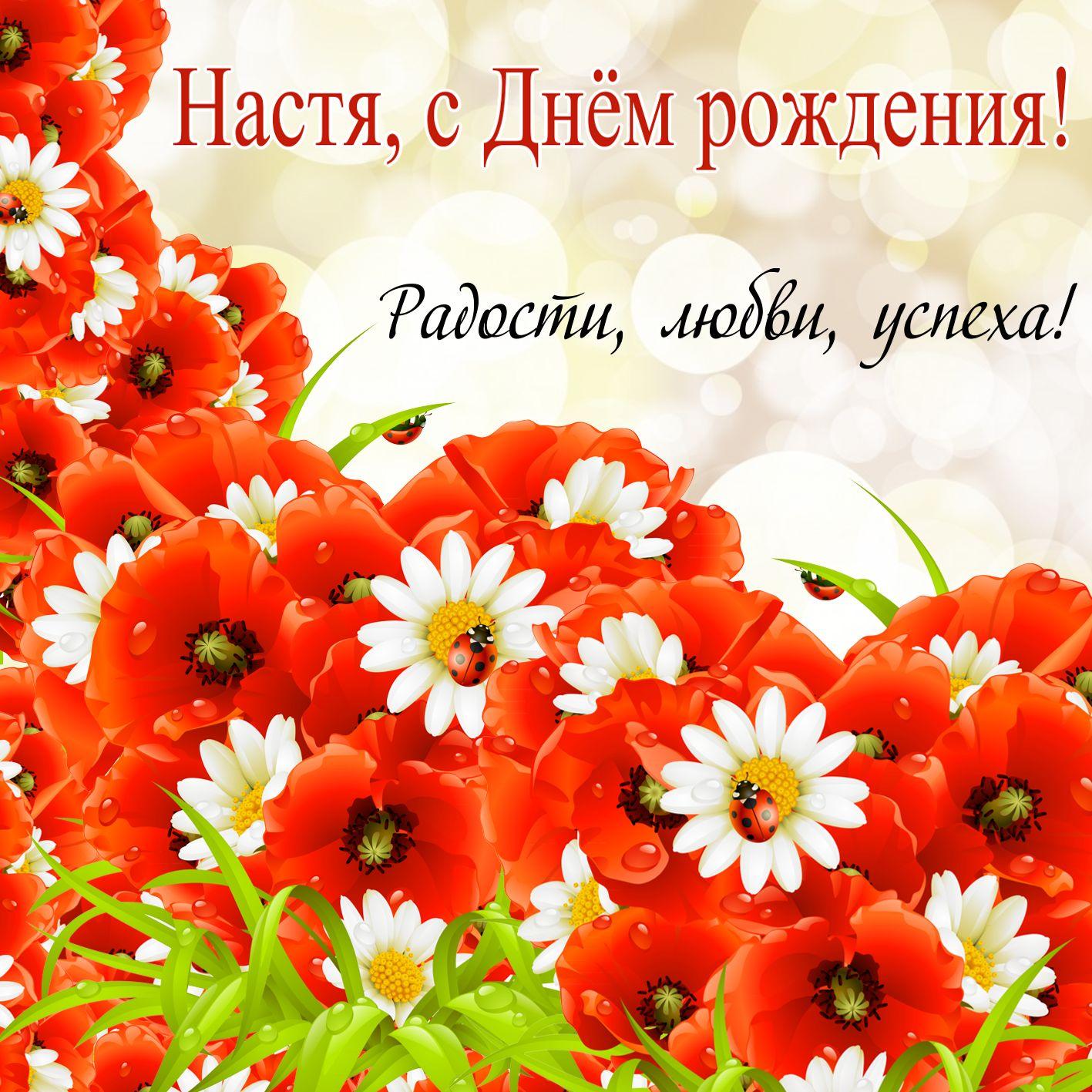 Поздравления с днём рождения Анастасия, Поздравления с днём рождения Анастасия