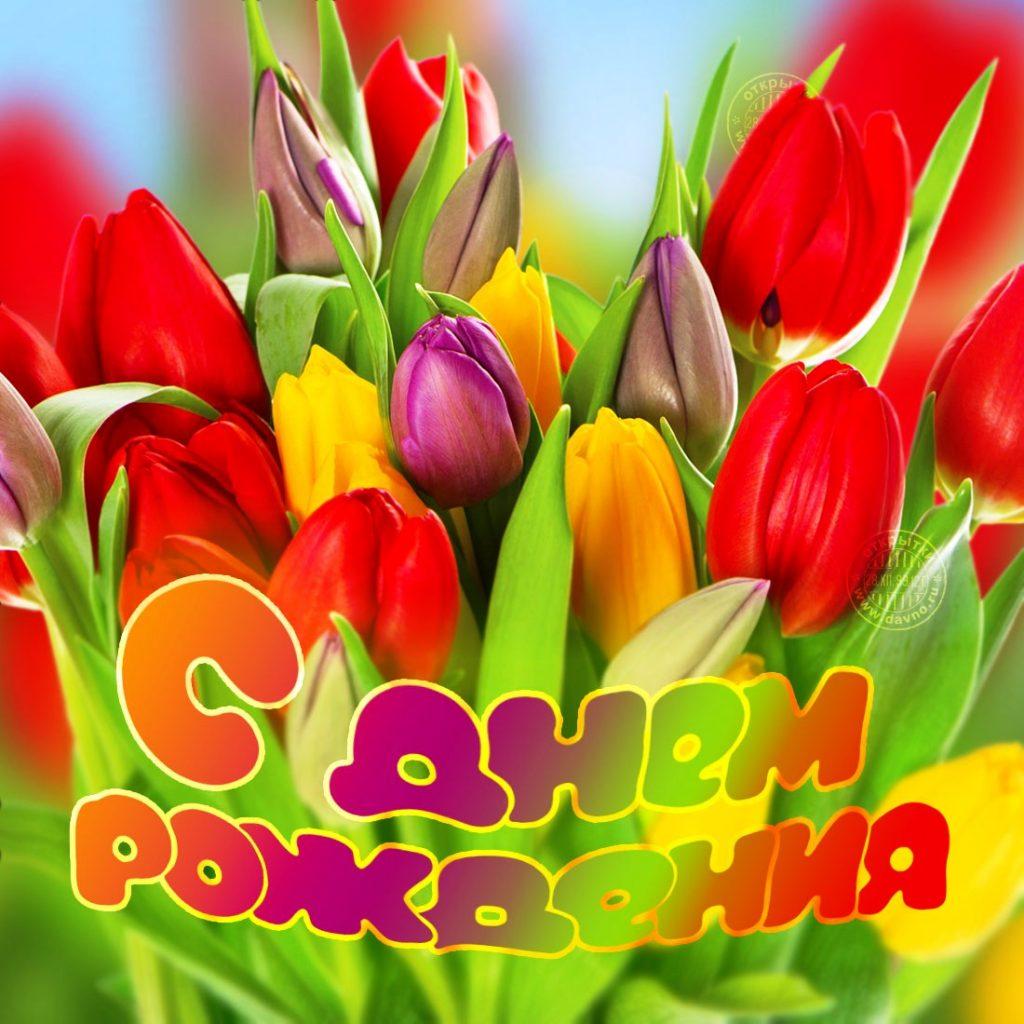 Поздравления с днём рождения для, тех кто родился Весной