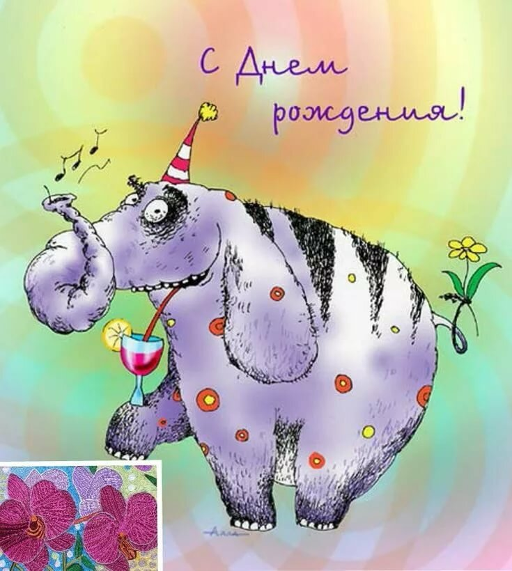 Забавные открытки с днем рождения